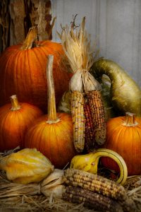 autumn-gourd-pumpkins-and-maize-mike-savad