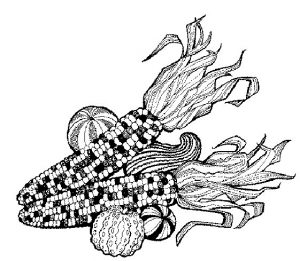 maize-clip-art
