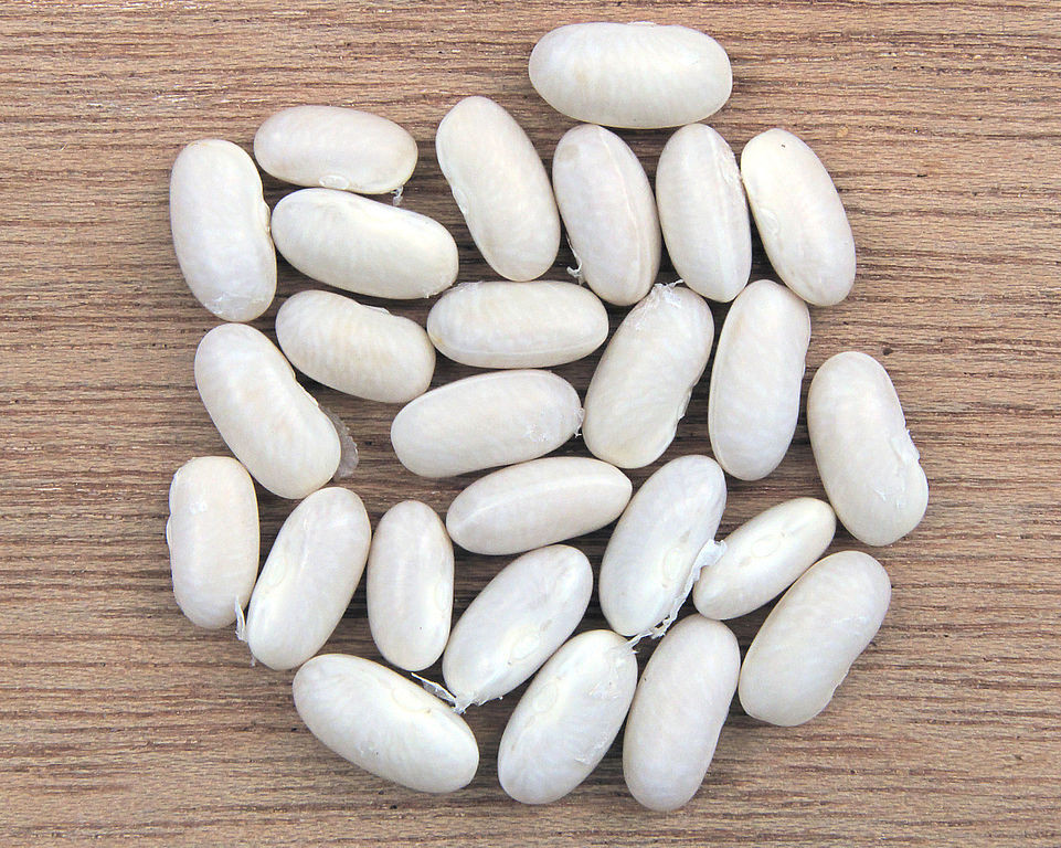 White Kidney Bean Extract Ucan