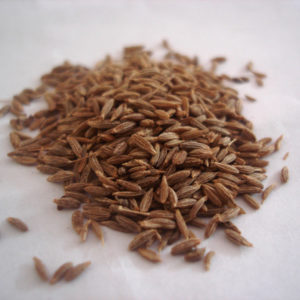 Cumin Seed Powder by the Ounce