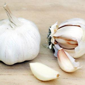 Garlic Powder Bulk by the Ounce